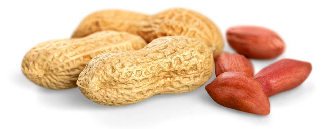 jumbo-virginia-peanuts.jpg